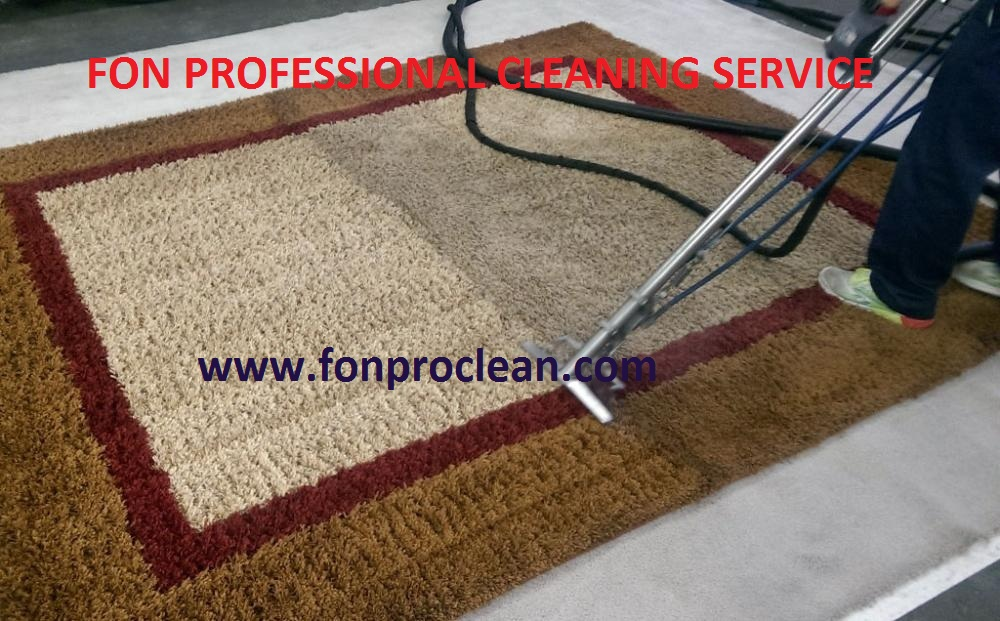FON Professional Cleaning Service